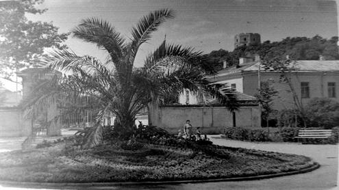 Jaunimo sodas Vilniuje. 1952 07.  Fotografas Š.Fainas, nuotrauka iš LCVA.