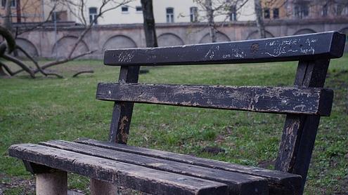Vienišas suoliukas. Seniausias visame parke. Autoriaus nuotr.