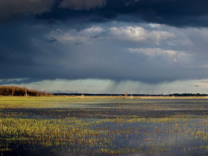 Potvynio užlietos Šyšos kaimo pievos