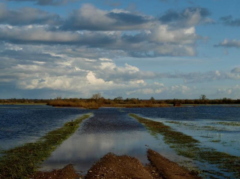 Pievos čia – tai kanalų išraizgytos lygumos, su atsiveriančiais horizontais. Asmeninio archyvo nuotr.