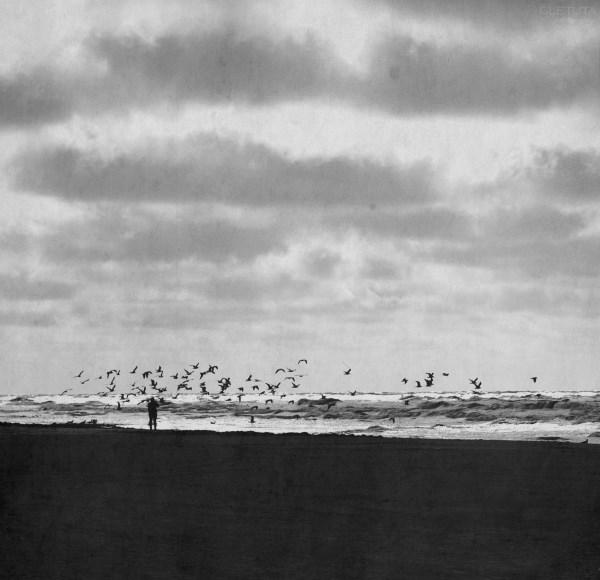 """""""Virš manęs praskrido žuvėdros. Kažkodėl nepanorau jų fotografuoti"""". Autorės nuotr."""