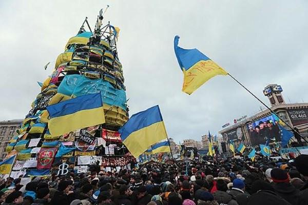 Euromaidano protestuotojus daugiausia jaudino socioekonominės šalies problemos ir pilietinės teisės, miglotu priežastiniu ryšiu sietos su laisvos prekybos sutartimi tarp Ukrainos ir ES.