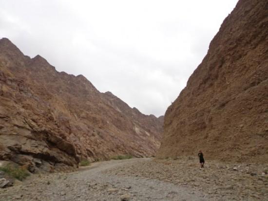 Anduose vanduo prieinamas tik kas 150 km. Asmeninio albumo nuotr.