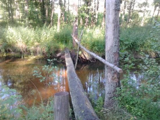 Ekstremalus lieptelis per Grūdos upę Zackagirio pažintiniame take. Asmeninio albumo nuotr.