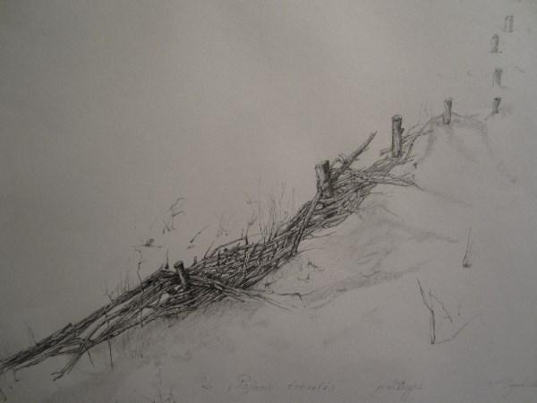 """N. Vilutienė """"Pajūrio tvorelės"""" (piešinys; 2015). Austėjos Mikuckytės nuotrauka."""