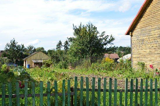 Vos kelis metrų nutolus nuo gyvenvietės centro, pajuntamas tikras kaimo kvapas – vietiniai ką tik nukasė bulves. Autoriaus nuotr.