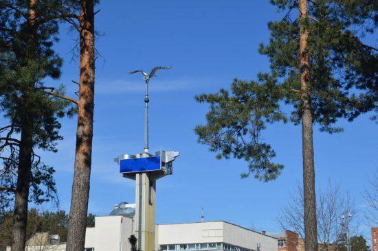 Visagino miesto simbolis – gervė, simbolizuojanti gyvybingumą ir išmintį. Šis paukštis taip pat pavaizduotas miesto herbe.