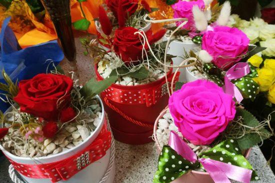 """Mados vyrauja ne tik aprangoje, bet ir gėlėse. V. Česienė pastebi, kad praėjusiais metais visus labai domino gėlės dėžutėse. Šiemet populiarios miegančios rožės. """"Čia yra tikros rožės, tik užmigdytos. Jos nebijo šalčių, o ir laistyti nereikia"""", – aiškina floristė. Autorės nuotr."""