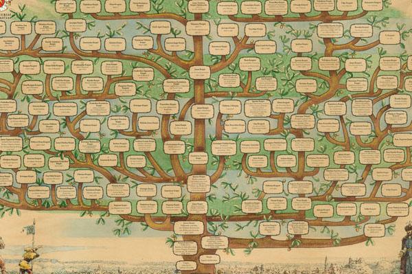 Giminės medis. Herbai.lt nuotr.