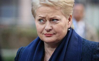 D. Grybauskatė dažnai įvardijama kaip aktyviausia šalies vadovė per visą šiuolaikinės Lietuvos laikotarpį.